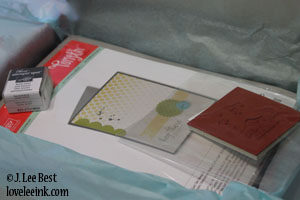 Stampin' Up - My Paper Pumpkin Introductory Card Kit