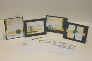 Cards and envelopes made using the Stampin' Up ~ My Paper Pumpkin Introductory Card Kit